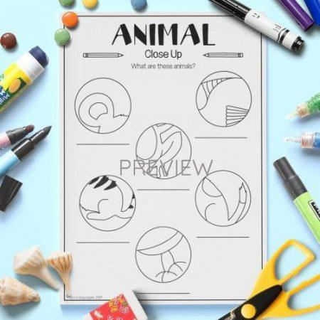 ESL English Animals Close Up Vocabulary Activity Worksheet