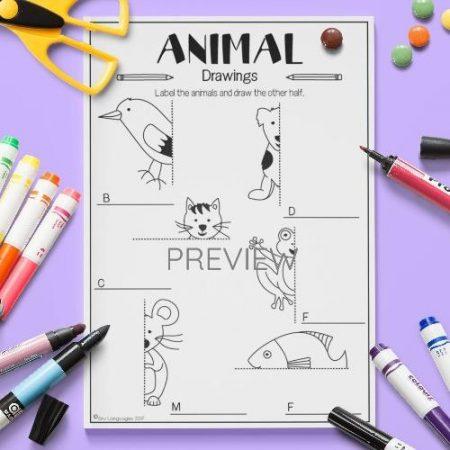 ESL English Animals Draw The Other Half Activity Worksheet