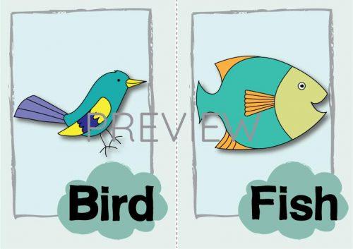 ESL English Bird Fish Flashcard
