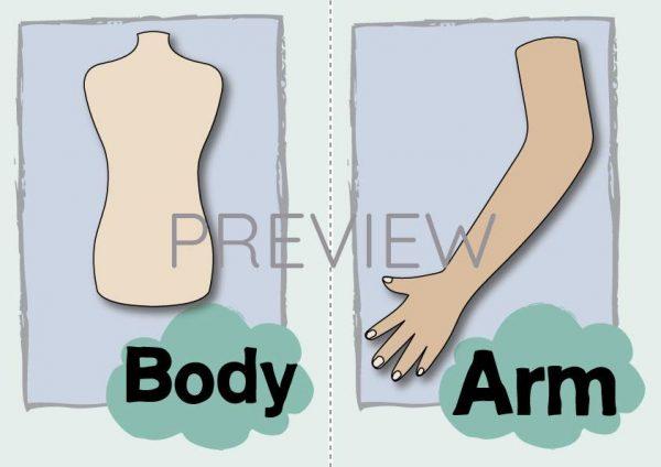 ESL EnglishBody Arm Flashcard