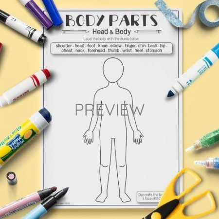 ESL English Face And  Body Vocabulary Activity Worksheet