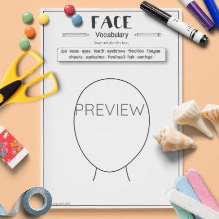 ESL English Face Vocabulary Activity Worksheet