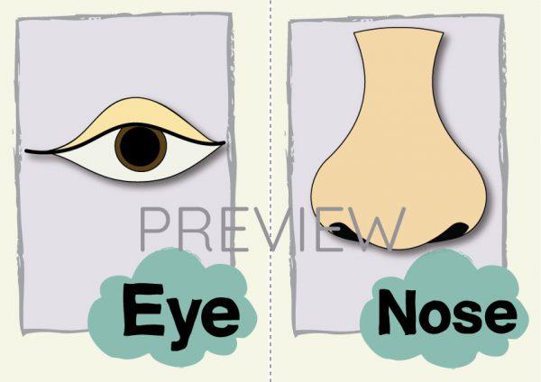 ESL English Eye Nose Flashcard