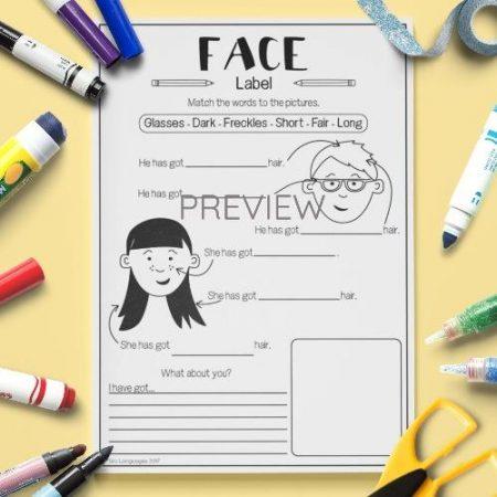 ESL English Face Labelling Activity Worksheet