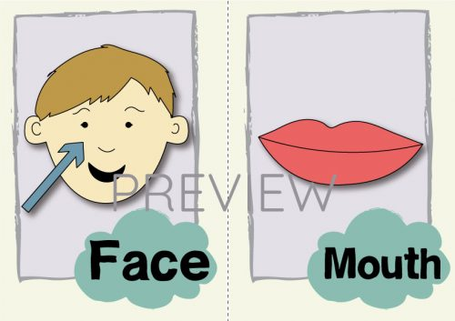 ESL English Face Mouth Flashcard