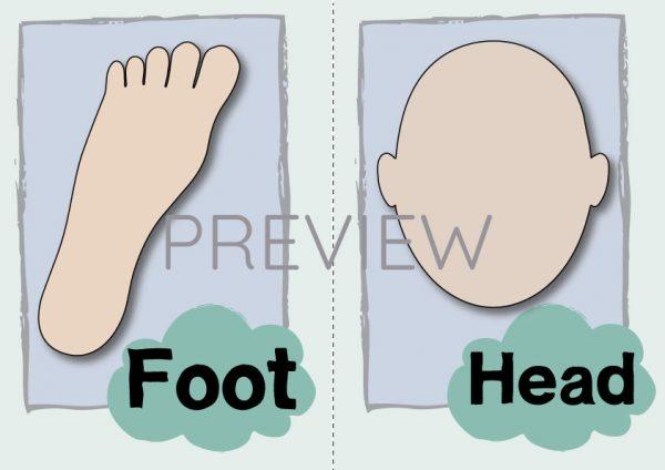 ESL English Foot Head Flashcard