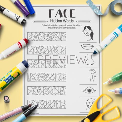 ESL English Face Hidden Words Activity Worksheet